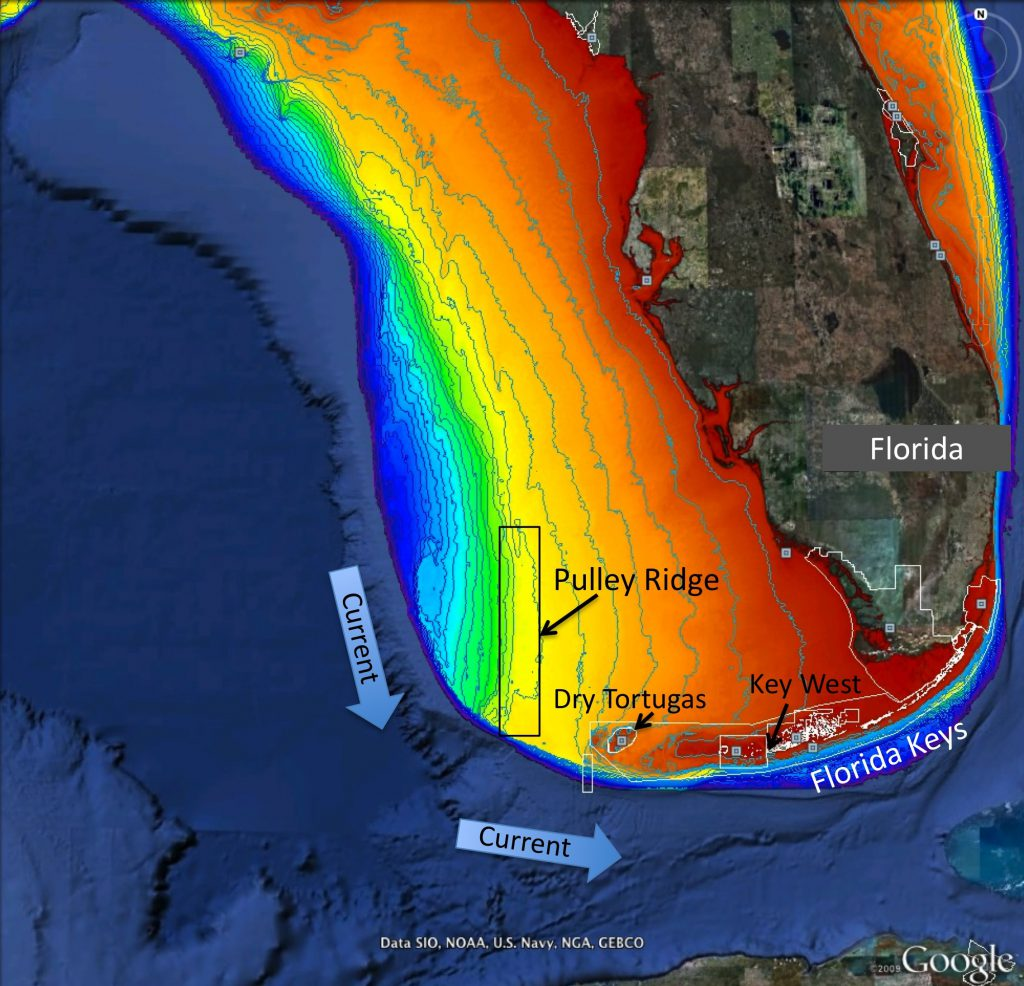 Map of project area showing Pulley Ridge, off the west coast of Florida at depths of 200–330 feet in relation to the downstream reefs of the Dry Tortugas and Florida Keys.