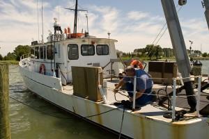 Fire destroys research vessel – The Star Democrat: Local
