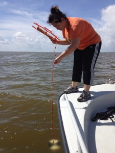 Picture of sampling the brown tide in the Florida Indian River lagoon system