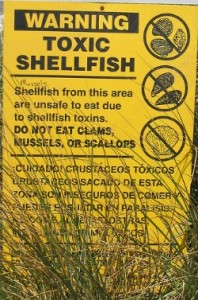 Sign warning public not to eat shellfish which are toxic