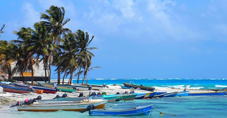 Caribbean island coastal scene with turquoise waters and colorful fishing boats.