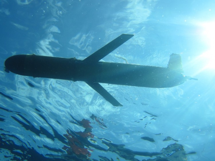 The slocum ocean glider en route headed to the depths. Photo credit: C. Lembke, University of South Florida.