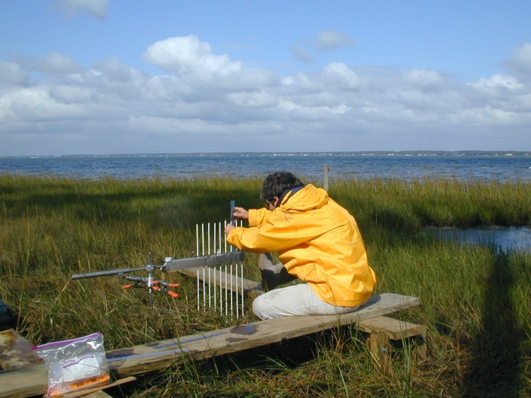 NCCOS researcher using Surface Elevation Table to monitor elevation changes in a North Carolina salt marsh.