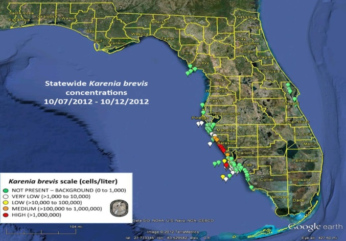 Toxic Algae In Florida Map Harmful Algal Bloom intensity related to ocean carbon dioxide levels