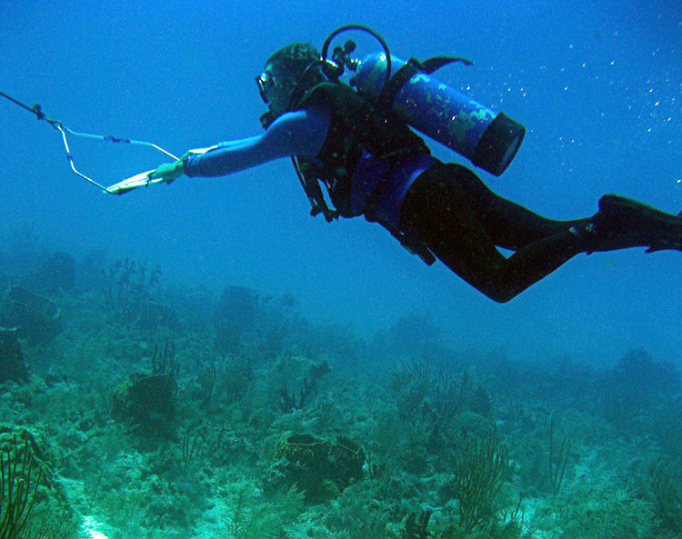 FWCC researcher Tom Matthews conducts a towed-diver survey over reef habitat in the Florida Keys National Marine Sanctuary.