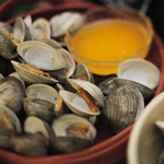 A seafood delicacy made toxic by HABs: the hard clam/quahog (credit NOAA NMFS)