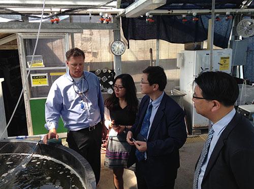 NCCOS researcher Dr. James Morris  explains aquaculture research and technology to Korean delegation