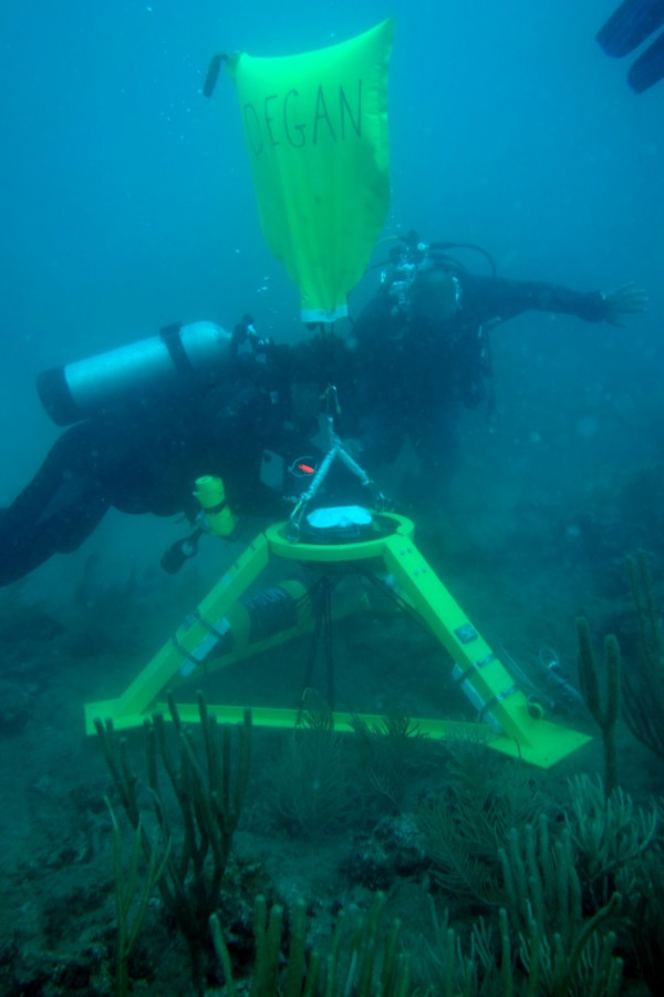 NOAA divers deploy an Acoustic Wave and Current profiler (AWAC) to measure waves of all sizes and current speeds at one meter depths.