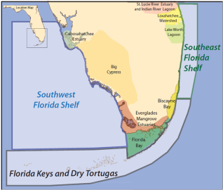 Three major areas (Florida Keys/Dry Tortugas, Southeast Florida Coast, Southwest Florida Shelf) were the focus of the MARES project