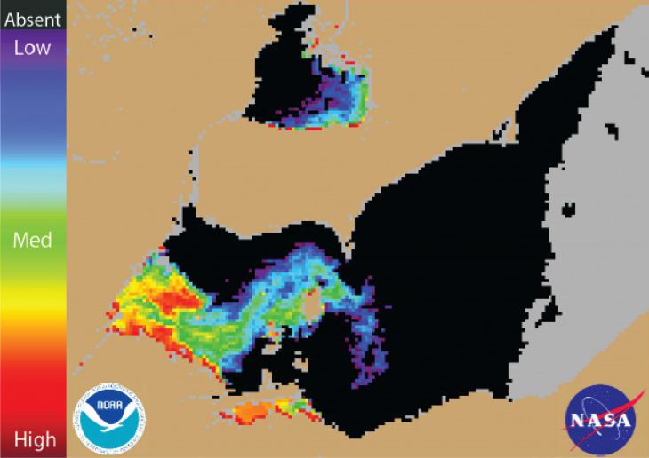 Figure 1. Cyanobacterial Index from NASA's MODIS-Aqua data collected 3 August 2014 at 1:10 pm. Grey indicates clouds or missing data. Black represents no cyanobacteria detected. Colored pixels indicate the presence of cyanobacteria. Cooler colors (blue and purple) indicate low concentrations, and warmer colors (red, orange, and yellow) indicate high concentrations. The estimated threshold for cyanobacteria detection is 35,000 cells/mL.