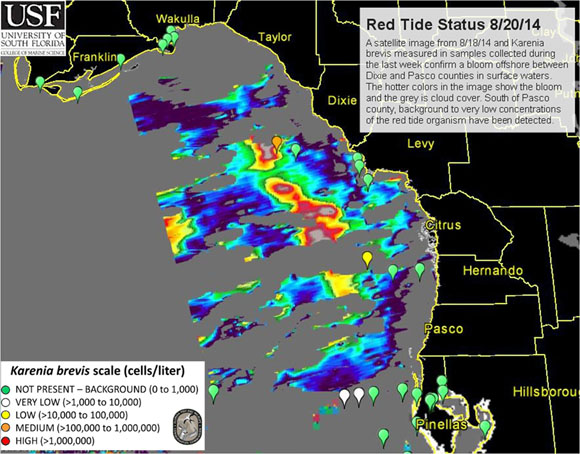 Florida Fish and Wildlife Conservation Commission Red Tide Current Status, August 24, 2014. (Credit FWC)