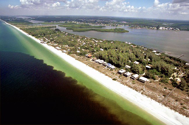 """The infamous Florida """"red tide,"""" Karenia brevis, along the Gulf Coast. Credit: NOAA"""