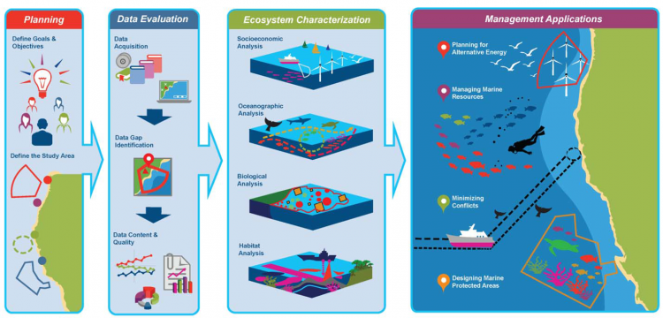 NOAA's Biogeographic Assessment Framework to support marine spatial planning. A logical sequence of steps in information synthesis: 1) talking with managers to determine priorities; 2) assessing the data and identifying data gaps; 3) characterizing the ecosystem patterns and processes including human activities across the area of interest; and 4) working with managers to support specific management applications.