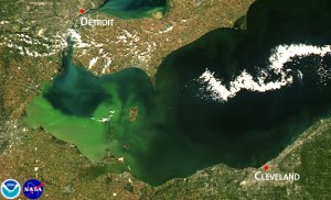 Satellite image of 2013 intense bloom, which was concentrated in the lake's western basin.  Credit: NOAA.
