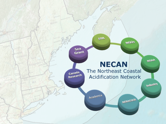 The Northeast Coastal Acidification Network (NECAN) links scientists, federal and state agency representatives, resource managers, and affected industry partners dedicated towards coordinating and guiding regional ocean acidification observing, research, and modeling endeavors. (Credit NECAN)