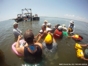 Dolphin health assessment in Barataria Bay, Gulf of Mexico