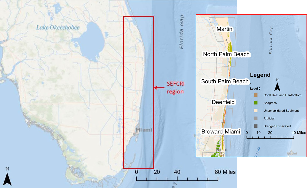 Running from north from Miami to Martin County, the Florida Northern Reef Tract is highly susceptible to anthropogenic nutrient inputs and is managed by the Southeast Florida Coral Reef Initiative (SEFCRI).