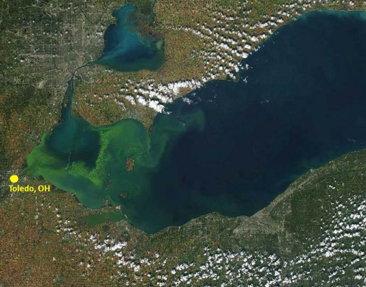 Lake-Erie-2014-MODIS-satellite-image