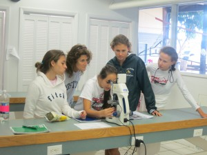 Students viewing new digital microscope; one of five new microscopes that will be used to identify identifying phytoplankton in the Florida Keys . (Credit S. Morton, NOAA NCCOS)