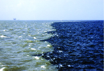 A plume of freshwater enriched in nutrients and sediments enters the Gulf of Mexico from the Mississippi River. (Credit Nancy Rabalais, Louisiana Universities Marine Consortium)