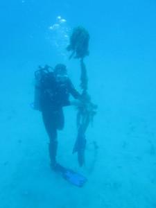 diver-retrieving-acoustic-fish-receiver-in-USVI
