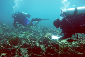 National Coral Reef Monitoring Program divers survey the reefs around St. John in the U.S. Virgin Islands. Credit: NOAA