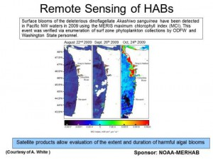 MOCHA-derived satellite products allow for the identification of HAB hotspots along the Oregon coastline. Credit. OSU.