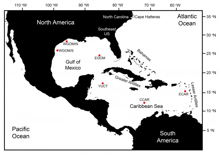 Map of the Caribbean region showing the six buoy sites (red dots) where temperature and growth were projected through the end of the 21st century. Credit: NOAA