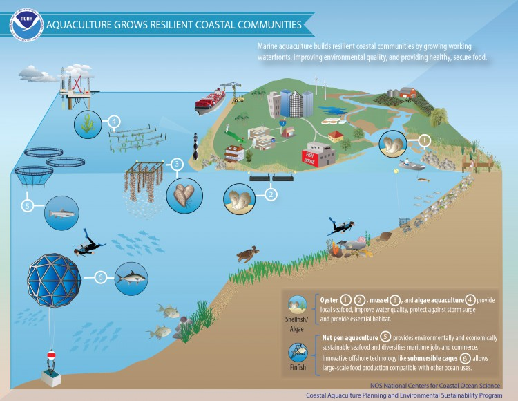the benefits and applications of aquaculture in society