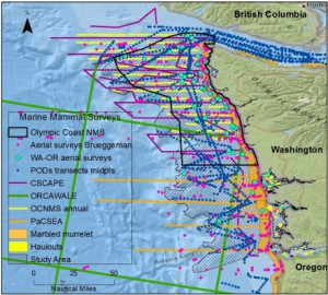 Inventory of marine mammal surveys off the coast of Washington.