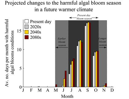 Credit NOAA NWFSC Marine Microbes and Toxins Program