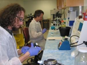 Sitka Tribe of Alaska scientists conduct a high-throughput assay for paralytic shellfish toxins. Photo Credit Jennifer Maucher Fuquay, NOAA