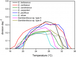 Average growth response of Gambierdiscus species to temperatures of 16âۉ€œ36°Celsius. Credit Y. Xu, WHOI