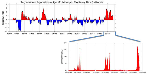 Temperature anomaly (deviation of temperature from mean) and toxin (domoic acid) at Santa Cruz wharf. Credit R. Kudela, unpublished)