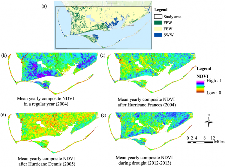 (a) Apalachicola Bay and lower river marshes, derived from C-CAP wetland classification (2006), used as the study area. Freshwater Forested Wetland (FFW) represents 8.36% of the total area, Freshwater Emergent Wetland (FEW) represents 73.77%, and Saltwater Wetland (SWW) represents 6.83%. The majority of 'Other' is agricultural land, whereas the blue color represents open water. Yearly averaged NDVI values at the Apalachicola Bay (b) for a regular year and (c -e) for different extreme hydrologic events. The study area included a total of 1098 à - 2035 pixels of each cell size 30 m à - 30 m. In Figures 1b -1e water bodies are represented as white, whereas the blue color in the maps corresponds to healthy wetlands (vigorous, dense green biomass), and yellow to red color corresponds to stressed wetlands (less to no vegetation). Courtesy of S. Medeiros (UCF) and modified from Geophysical Research Letters, copyright John Wiley & Sons, Inc.