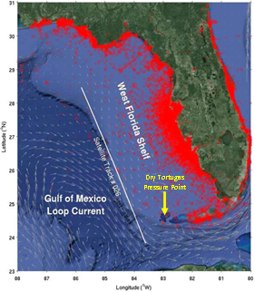 Locations of in situ observations of Karenia brevis cell counts (red crosses) in the Florida coastal region during 1953 -2015. The long-term mean Gulf of Mexico Loop Current is shown as mean surface geostrophic velocity vectors derived from the mean dynamic topography. White line indicates ground track of satellite altimeters (Topex/Poseidon, Jason 1 and Jason 2) along the West Florida Shelf slope (solid white line). When the altimetry-derived surface geostrophic currents contact the shallow depths near the Dry Tortugas area, pressure perturbations of the Loop Current system can project across the entire shelf and induce upwelling of the nutrient-rich deep water onto the shelf. Adapted from R. Weisberg, USF