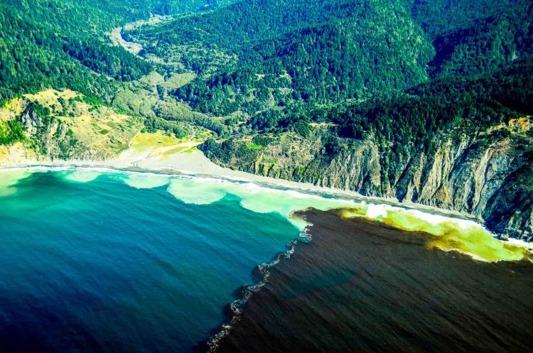 """Red tide off Northern California's """"Lost Coast."""""""