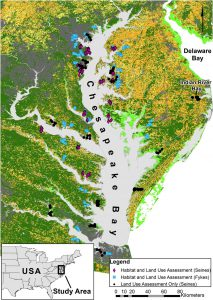 Research Links Land Use, Shoreline Hardening, and Species Abundance