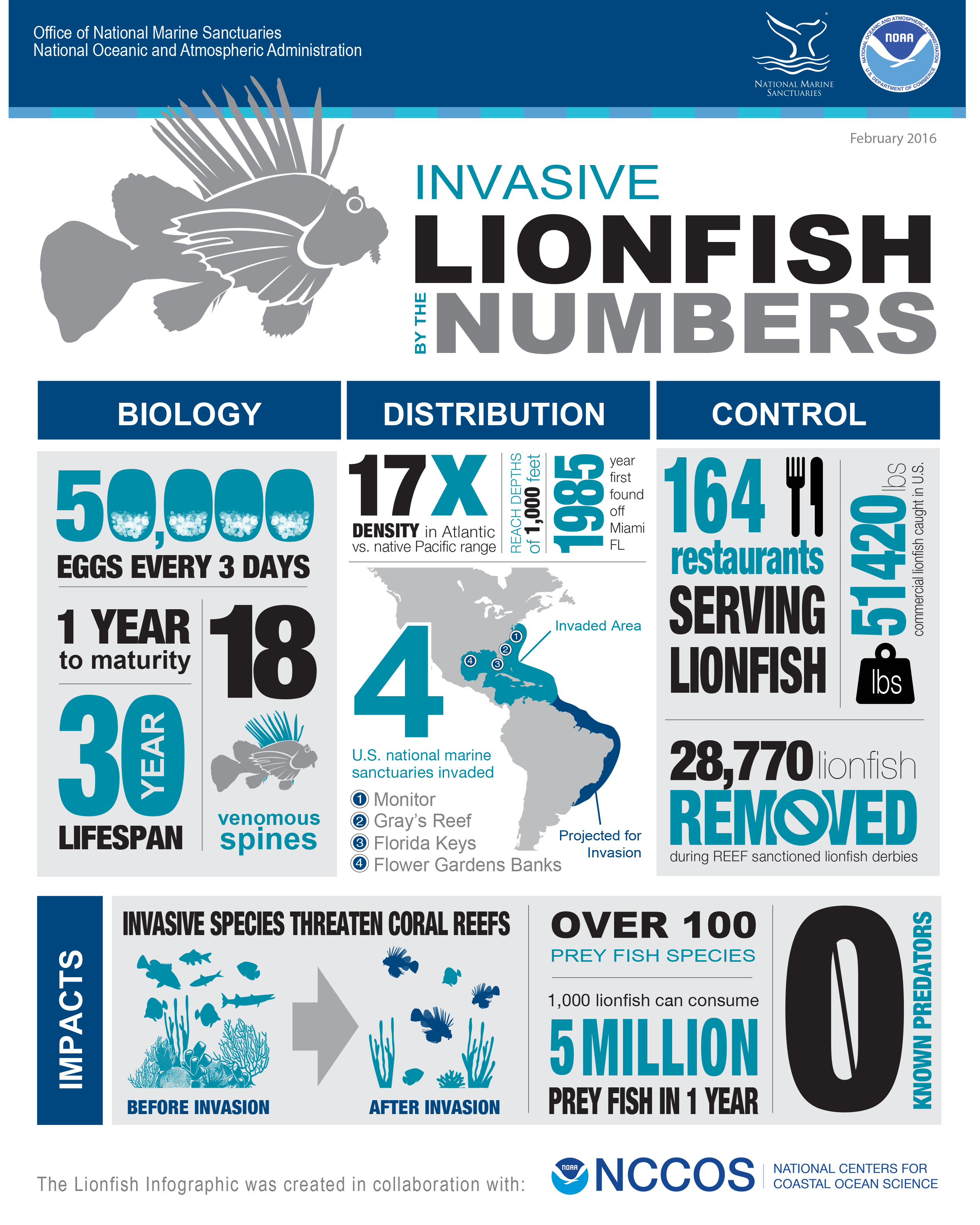 lionfish infographic