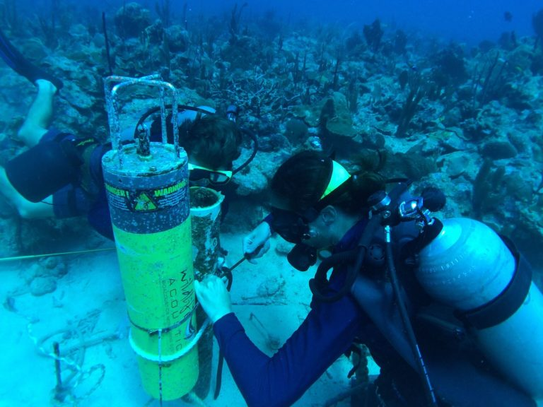 Acoustic Monitoring Reveals Hurricane Maria's Impact on Puerto Rico's Coral Reefs