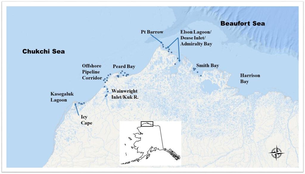 Map of 2015 Arctic study area.
