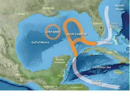 Florida Current Map.West Florida Shelf And Dry Tortugas Impact Gulf Of Mexico Loop