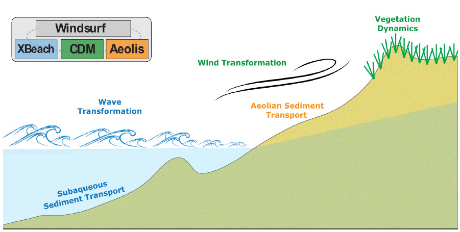 Cross-shore schematic of the coupled Windsurf modeling framework showing the general processes resolved by the three model cores.