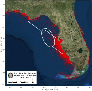 2017-2018 Florida Red Tide Determined by Ocean Circulation