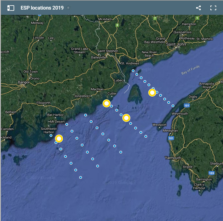 Map showing locations of ESPs (yellow dots) and cruise survey stations (blue dots) in the Bay of Fundy and the Gulf of Maine.