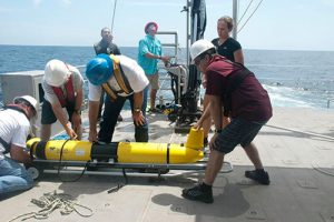 Testing the Feasibility of Robotic Gliders to Monitor the Gulf of Mexico Dead Zone