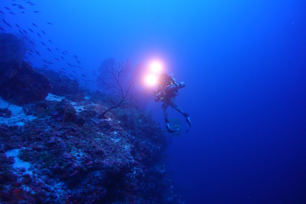 NOAA Awards $2.4 Million for Mesophotic Coral Ecosystem Research in American Samoa