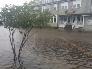 NCCOS Awards $1.5 Million to Support Coastal Communities Facing Changing Sea Levels and Flooding