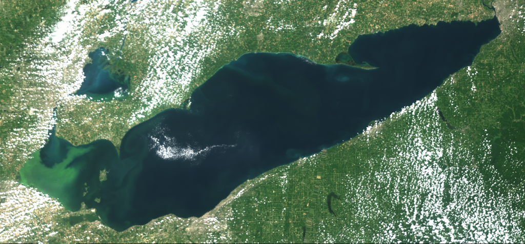Lake Erie HAB 2019 Retrospective: Bloom Severity was 7.3, as Predicted by Seasonal Forecast