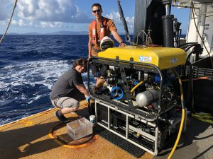 Highlights of the Southeast Deep Coral Initiative in 2019